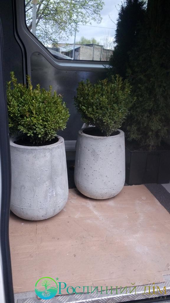горшки из бетона купить в